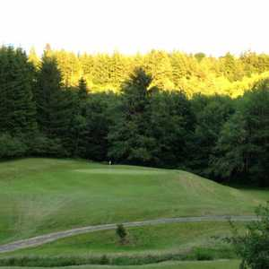 Olalla Valley GC: #4
