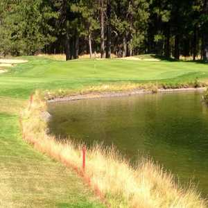 Widgi Creek #17