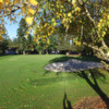 View of a green at McNary Golf Club