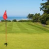 View from a green at Salishan Golf Links.