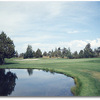 Greens at Redmond #5 (John Vawter)