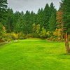 Skamania Lodge #5 - A good target is the large snag guarding the middle of the fairway. (Tell yourself that you hit a good shot if you actually hit the tree!) The landing area is actually quite large, and leaves a short iron approach shot.