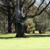 A view of a green at Roseburg Country Club