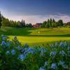 View of a green at Langdon Farms Golf Club