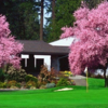 A view of a hole surrounded by spring blossom trees at Tualatin Country Club.