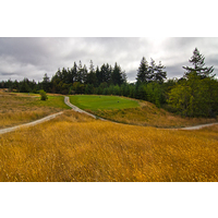 Crossroads are very typical at Bandon Crossings Golf Course.