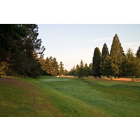 Keep it straight as you tee off on the par-4 second hole at Rose City Golf Course in Portland, Oregon.