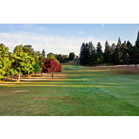 Here's a view of the fairway on the fourth hole at Rose City Golf Course in Portland, Oregon.
