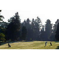 Here's a view of the seventh hole at Rose City Golf Course in Portland.